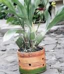 Pot tanah liat